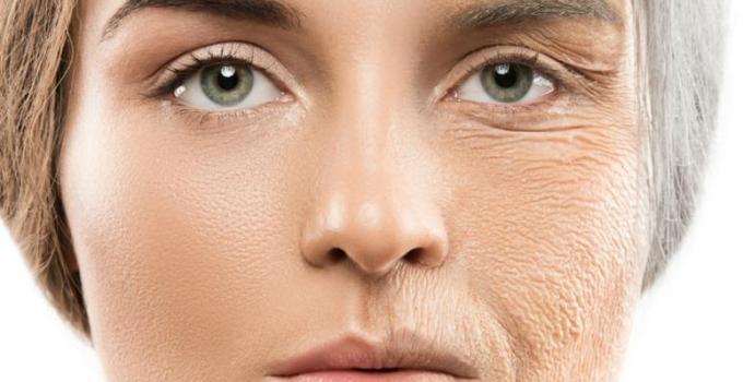 Khi bị lão hóa, lượng collagen trong cơ thể đã suy giảm đáng kể, độ đàn hồi mất đi và những nếp nhăn hình thành nhiều