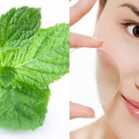 Các loại thảo dược trị nám da cực hiệu quả và an toàn